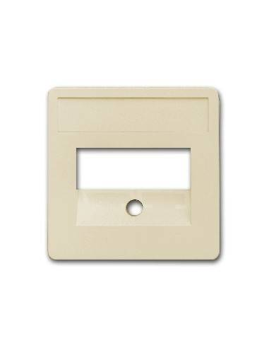 SETEC central plate, 50x50mm, RAL1013, for 2x RJ45  - 1